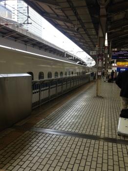 Our beautiful Shinkansen, Hikari!