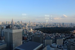 Yoyogi Park from Shinjuku South Tower