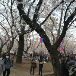 Omiya Park