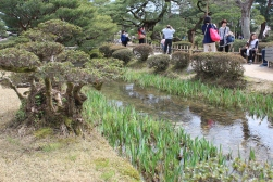 Kenroku Garden, one of the three best gardens in the country.