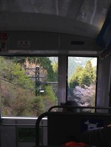 Up the rope bridge towards Mt. Mitake!