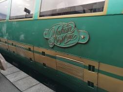 Yufuin no Mori Limited Express